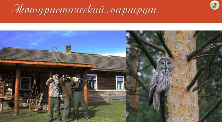 PruzhanyRU_24